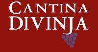 logo cantina divinja