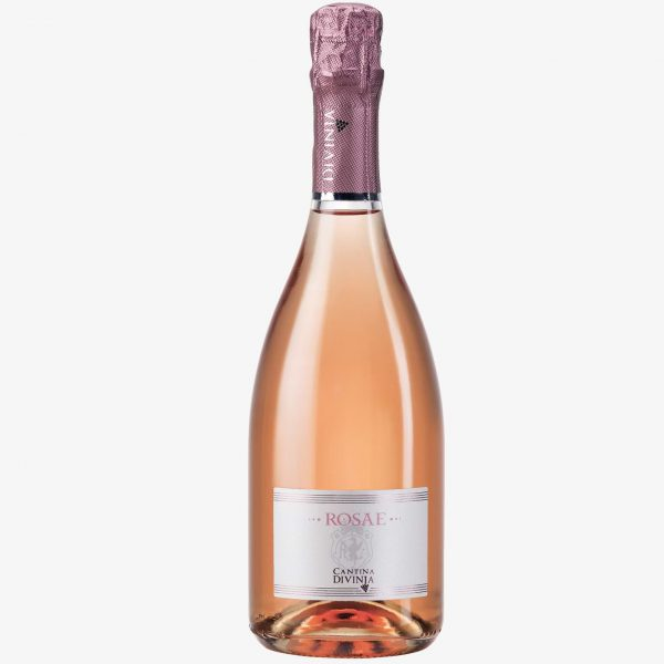 lambrusco-di-sorbara-rosato-Rosae-Cantina-Divinja-Modena