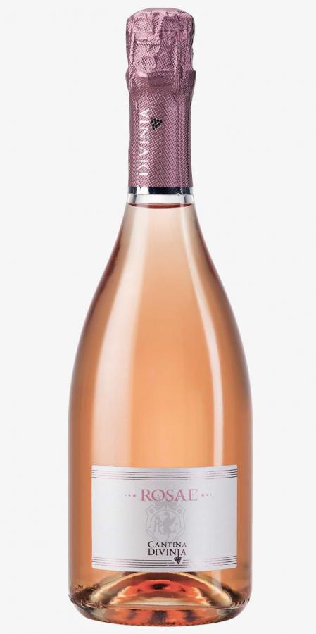 lambrusco-di-sorbara-rosato-Rosae-Cantina-Divinja-Modena.jpg